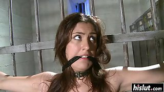 Horny guy tied up diana stewart before he punished her with toys