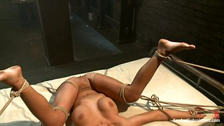 Charisma Cappelli  James Deen in American Whore Story - SexAndSubmission