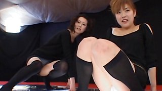 Asian cuties vibrating cunts in a game